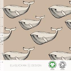 Whale - Cappuccino (038)