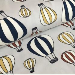 Airballoon - Desert (031)