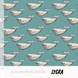 Lycra Whale Aqua