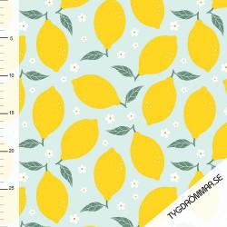 Badlycra - Lemons